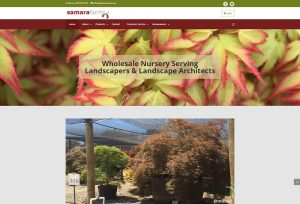 lappy_with_homepage-samara 1